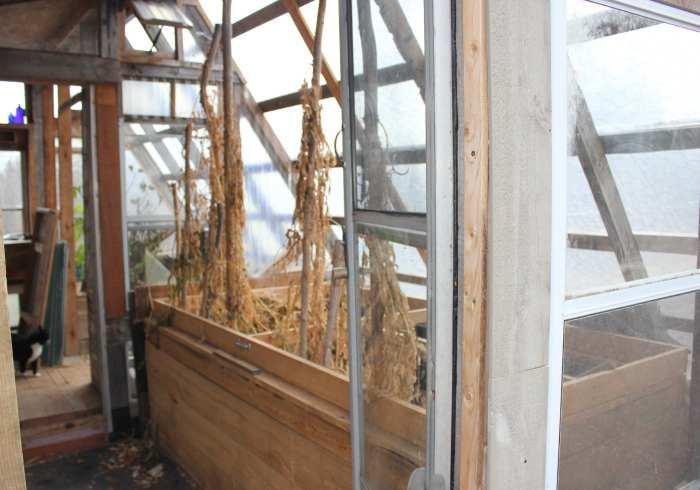 greenhouse 3 doc