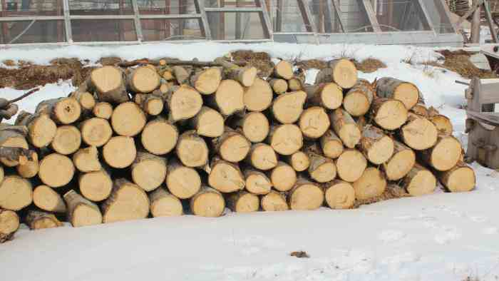 log pile 1