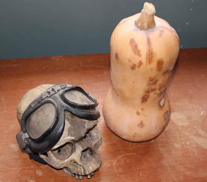 skull and squash